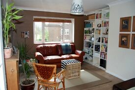 Lovely first floor, 2 double bed flat with park views and balcony in Barnes SW13