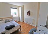 Superb,City Centre, Professional /Post-Grad, House in Newport