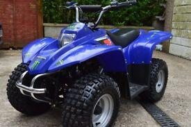Explorer r50 kidsquad quadbike 50 cc raptor 50 suzuki lt 50 aeon 50 kazuma 50 15 months old