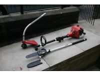 petrol strimmer with pruning saw