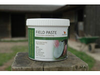 Red Horse Products Field Paste. An antifungal sole dressing for horse hooves.