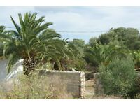 LAND FOR SALE IN MENORCA, SPAIN