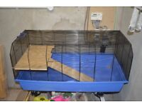 Very Large Hamster Cage (Alexander)