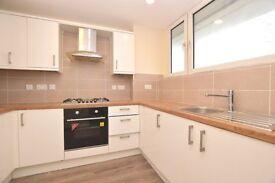 Stunning Modern Three Bedroom Overlooking Peckham Rye!