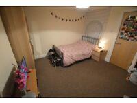 Large Double Room nr Cardiff Uni/Met