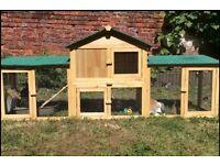 Large Rabbit Hutch / Guinea Pig Hutch - Almost New! House & Large Run - Modular Design