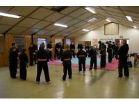 Ninjutsu classes