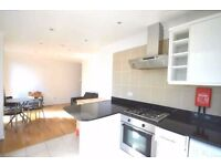 Amazing newly refurbished 1 bedroom apartment only 4-5 minutes walk from Angel & Kings Cross Station