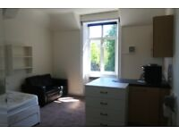 Double bedsit in Swiss Cottage with own kitchenette sharing lovely bathrooms and shower