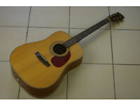 Cort Earth 70 Acoustic Guitar......WILL POST