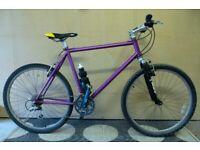 Marin 20 in mountain bike