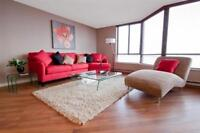 One Bedroom Penthouse The Carlisle for Rent - 221 Lyon Street...