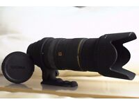 Sigma 50 – 500mm APO EX DG HSM (made in Japan), Cannon fit