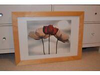 Flower Photo & Frame