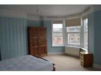 SHORT TERM furnished large DOUBLE ROOM in shared house, live in landlord, young professional wanted
