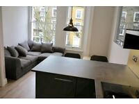 Newly Renovated 1 Bedroom Apartment