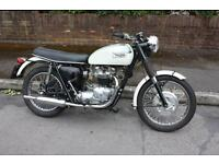 Triumph tiger 650 (1970) For Sale