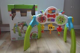 Buzzing Brains Grow with me melody gym – activity gym