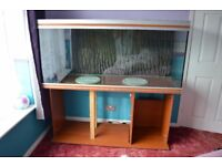 Rena 5FT Tank and Stand