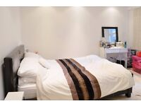 SPACIOUS ONE BEDROOM FLAT IN THE HEART OF ACTON AVAILABLE NOW! DSS WELCOMED!