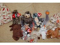 BEANIE BABIES BY TY 11 ANIMALS ALL VGC NEVER PLAYED WITH- ALL WITH TAGS