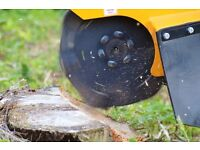 Stump Grinding Direct and Tree Removal SCOTLAND