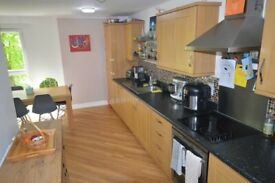 modern 3 bedroom apartment which boasts 2 large double rooms and one large single room