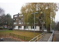 A spacious three double bedroom flat for rent in Clapham Junction