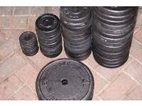 156 kg York Weight Plates