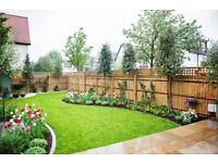 Professional & Affordable Gardening Maintenance Service / Window Cleaning Service [HARROW]