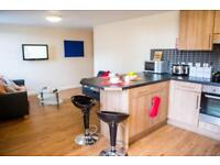 Student Flat Available Over Summer
