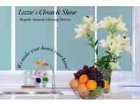 Lizzie's Clean & Shine Bespoke Domestic Cleaning Services, Sheffield and South Yorkshire