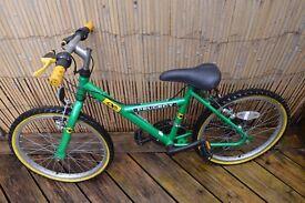 Junior Peugeot Green Bicycle