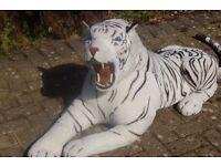 WHITE CUDDLEY TIGER