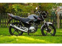 2012 Yamaha YBR 125 - Low mileage