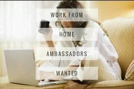 Ambassadors needed urgent