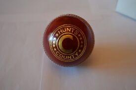 2 Hunts County Junior Cricket Balls