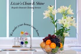 Lizzie's Clean & Shine Bespoke Domestic Cleaning & Ironing Service