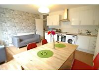 FOUR BEDROOM FLAT IN LIMEHOUSE BY THE RIVER WITH PRIVATE GARDEN SHOREDITCH STEPNEY MILE END BOW