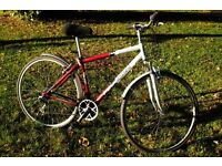 Bicycle / bike
