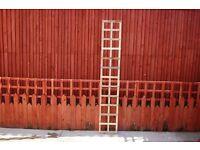 Square Trellis 180cmx30cm