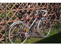 """Ladies Townsend Racing bike. 6 speed, 21"""" frame (53cm)"""