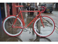 Brand new NOLOBI single speed fixed gear fixie bike/ road bike/ bicycles + 1year warranty 5po