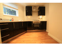 STUNNING & AMAZING 1 BEDROOM IN TULSE HILL !