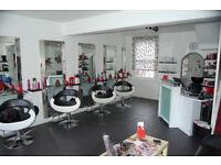 Experienced Senior Hair Stylist / Hairdresser