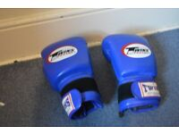 Thai boxing gloves made by twins