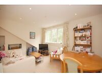 Beautifully converted two double bedroom Victorian flat in the heart of Tooting!!