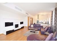 Superb 1 bedroom apartment in Royal Victoria Docks part dss acceptable with guarantor