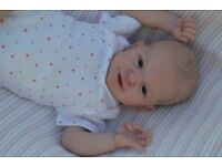 Reborn Baby Lifelike Girl Doll on ebay