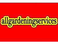 GARDENER, SOFT & HARD LANDSCAPE design, DECKING turf PATIOS hedge trimming TREE CUT CUTTING SURGERY